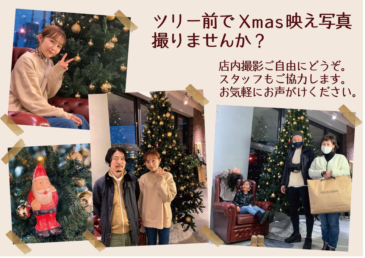 クリスマス映え写真撮りませんか?
